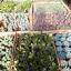 Suculentas m10 (consultar variedades)